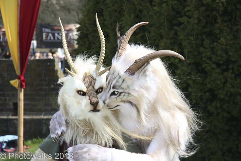 Elf_Fantasy_Fair_2013-13
